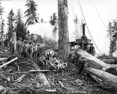 Timber Strike at Clemons