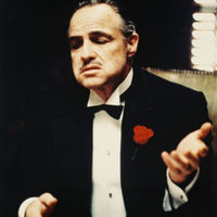 The Don or Vita Corleone (head of the mafia) capiche moment